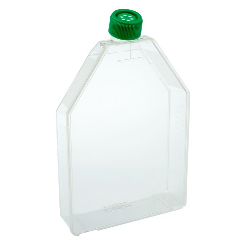 300cm2 Tissue Culture Flask - Vent Cap, Sterile