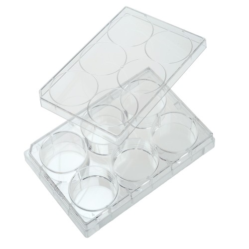 6 Well Non-treated Plate with Lid, Individual, Sterile