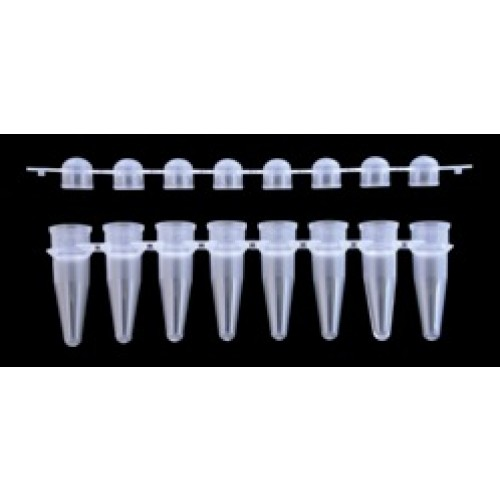 8-Strip PCR Tubes
