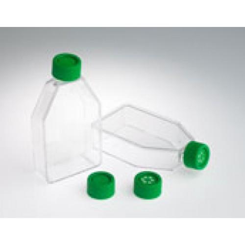 182cm² Vented/Filtered Tissue Culture Flask, 40/case