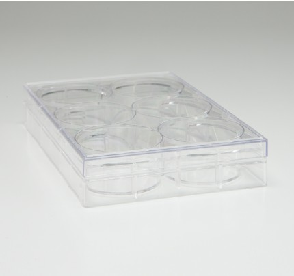 6 Well Cell Culture Plate, TrueLine, 50/case